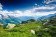 Fototapeten,schweiz,über,alpine,blau