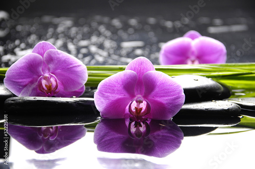 Spa still life with set of pink orchid and stones reflection