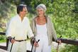 zwei senioren wandern durch den wald
