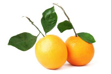 Orange fruit couple.