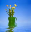 Flowers in flowerpot in water