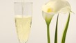 vino bianco e calla