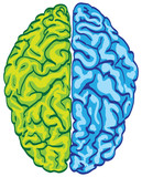 human color brain isolated - illustration poster