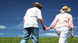 mature couple in hats goes by green grass in summer