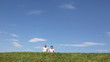 mature couple goes lively talking by grass against sky
