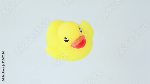 closeup of duckling  with color lights flashes floats water