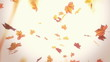Falling autumn leaves - looped animation