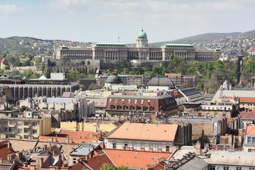 Budapest castle panorama