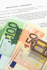 Form of prenuptial agreement with euro money
