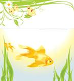 Goldfishes among algae poster