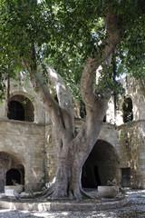 Rhodes courtyard