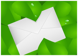 Letter on background of green leaves