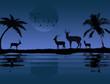 Antelopes near water