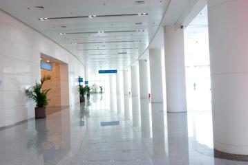 modern design interior of hall