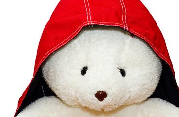 White bear in red hood