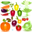 complete set vegetable