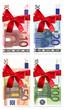 Geldscheinset mit roter Schleife