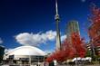 Leinwandbild Motiv CN Tower and Roger Centre During Fall