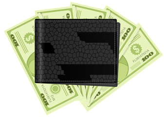 wallet and dollar banknotes