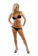Sexy young woman modelling a bikini