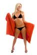 Sexy young woman modeling a bikini