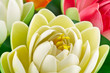 fleurs artificielles nénuphars