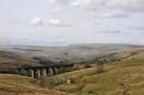 Dentdale Viaduct in Yorkshire Dales National Park poster