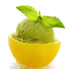 lemon- basil sorbet in cups of lemon on white isolated backgroun