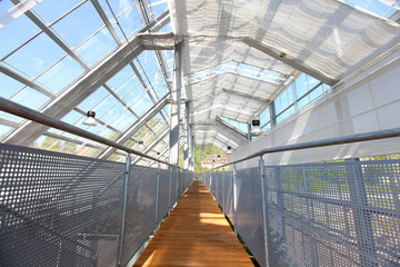 Glasshouse with glass roofing, wooden path and railing