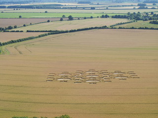 Crop circles in farm field, White Sheet Down, Wiltshire, United Kingdom