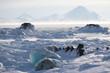 Arctic frozen fjord