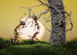 ants know to play games, scientific fact