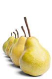 decreasing series of Packham pears on a white background poster