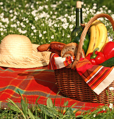 basket of picnic on the grass
