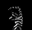 Zebra striped woman