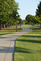 winding walk path in the park
