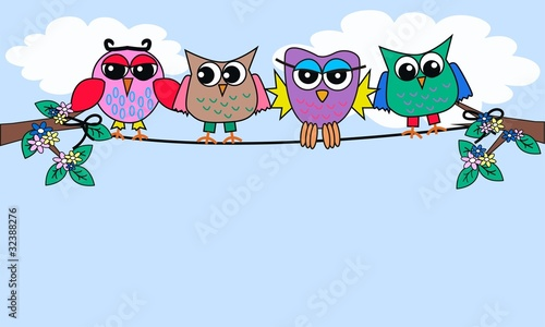 Aluminium Vogels, bijen colourful owls sitting on a rope
