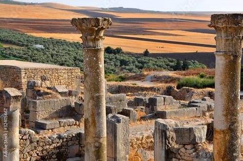 Rovine romane a Volubilis - Marocco