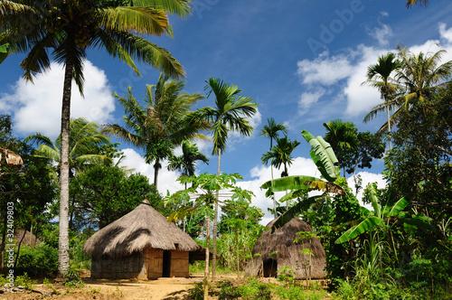 Foto op Plexiglas Indonesië Indonesia, Timor, Head hunter village