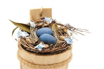 Vogelnest mit Eier
