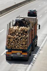 Lastwagen mit Holz beladen