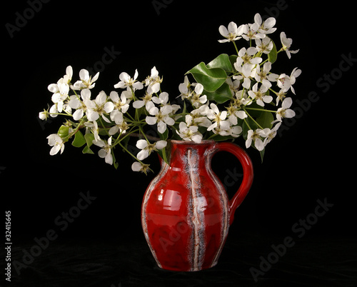 Bouquet of flowers and blossoms of cherries isolated on black