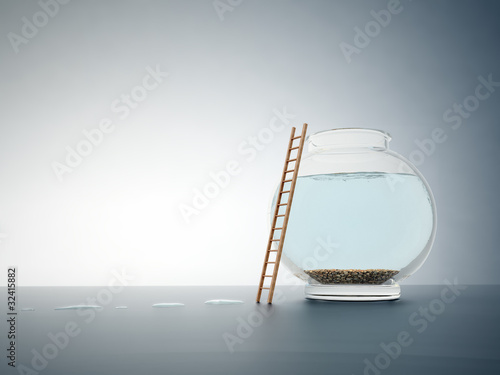 Empty fishbole with a ladder