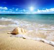 Fototapeten,bellen,strand,schöner,schönheit