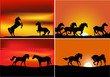 four compositions with horses at sunset