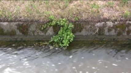 canale di irrigazione