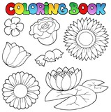 Coloring book with flowers set