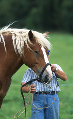 agriculteur préparant son cheval