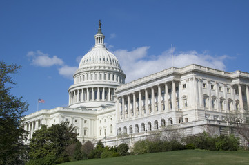 U.S. Capitol on a Bright Sunny Day with a Blue Sky