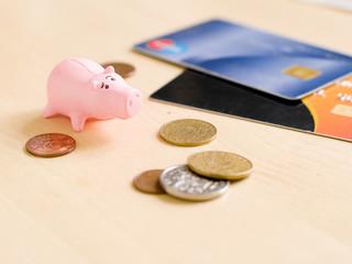 piggy and money
